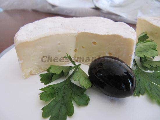 Вред и польза сыра с плесень